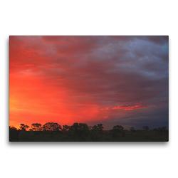 Premium Textil-Leinwand 75 x 50 cm Quer-Format Abendstimmung nahe der Etosha-Pfanne, Namibia | Wandbild, HD-Bild auf Keilrahmen, Fertigbild auf hochwertigem Vlies, Leinwanddruck von Dr. Werner Altner