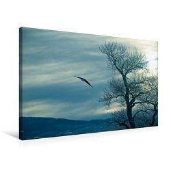 Premium Textil-Leinwand 75 x 50 cm Quer-Format Adler über Nord-Dakota | Wandbild, HD-Bild auf Keilrahmen, Fertigbild auf hochwertigem Vlies, Leinwanddruck von Marianne Drews