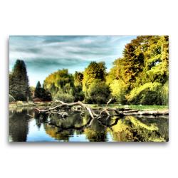 Premium Textil-Leinwand 75 x 50 cm Quer-Format Baumstämme | Wandbild, HD-Bild auf Keilrahmen, Fertigbild auf hochwertigem Vlies, Leinwanddruck von Garrulus glandarius
