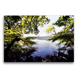 Premium Textil-Leinwand 75 x 50 cm Quer-Format Blick durch die Bäume am Laacher See | Wandbild, HD-Bild auf Keilrahmen, Fertigbild auf hochwertigem Vlies, Leinwanddruck von Anja Frost