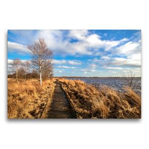 Premium Textil-Leinwand 75 x 50 cm Quer-Format Bohlenweg durch das Hochmoor   Wandbild, HD-Bild auf Keilrahmen, Fertigbild auf hochwertigem Vlies, Leinwanddruck von A. Dreegmeyer