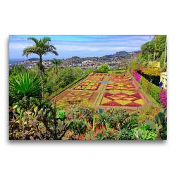 Premium Textil-Leinwand 75 x 50 cm Quer-Format Botanischer Garten   Wandbild, HD-Bild auf Keilrahmen, Fertigbild auf hochwertigem Vlies, Leinwanddruck von Klaus Lielischkies