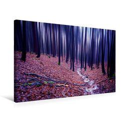 Premium Textil-Leinwand 75 x 50 cm Quer-Format Buchenwald im Herbst | Wandbild, HD-Bild auf Keilrahmen, Fertigbild auf hochwertigem Vlies, Leinwanddruck von Val Thoermer von Thoermer,  Val