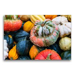 Premium Textil-Leinwand 75 x 50 cm Quer-Format Bunte Kürbis Vielfalt | Wandbild, HD-Bild auf Keilrahmen, Fertigbild auf hochwertigem Vlies, Leinwanddruck von Dieter Meyer