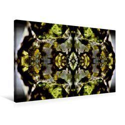 Premium Textil-Leinwand 75 x 50 cm Quer-Format Canala   Wandbild, HD-Bild auf Keilrahmen, Fertigbild auf hochwertigem Vlies, Leinwanddruck von NUPHO Nihat Uysal Photography von - Nihat Uysal Photography,  NUPHO