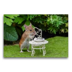 Premium Textil-Leinwand 75 x 50 cm Quer-Format Der Tisch ist gedeckt! Auch Mäuschen wollen gepflegt speißen! | Wandbild, HD-Bild auf Keilrahmen, Fertigbild auf hochwertigem Vlies, Leinwanddruck von Birgit Cerny