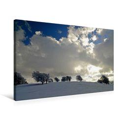 Premium Textil-Leinwand 75 x 50 cm Quer-Format Die Wetterbuchen am Schauinsland | Wandbild, HD-Bild auf Keilrahmen, Fertigbild auf hochwertigem Vlies, Leinwanddruck von Ingo Laue