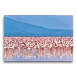 Premium Textil-Leinwand 75 x 50 cm Quer-Format Flamingos im Rift Valley | Wandbild, HD-Bild auf Keilrahmen, Fertigbild auf hochwertigem Vlies, Leinwanddruck von Jürgen Feuerer