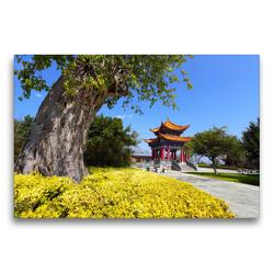 Premium Textil-Leinwand 75 x 50 cm Quer-Format Frühling in der Provinz Yunnan / China | Wandbild, HD-Bild auf Keilrahmen, Fertigbild auf hochwertigem Vlies, Leinwanddruck von Thomas Böhm