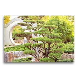Premium Textil-Leinwand 75 x 50 cm Quer-Format Gartenkunst: Chinesischer Garten mit Gartenbonsai. | Wandbild, HD-Bild auf Keilrahmen, Fertigbild auf hochwertigem Vlies, Leinwanddruck von CALVENDO