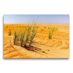 Premium Textil-Leinwand 75 x 50 cm Quer-Format Grüne Gräser der Wüste | Wandbild, HD-Bild auf Keilrahmen, Fertigbild auf hochwertigem Vlies, Leinwanddruck von Jürgen Feuerer