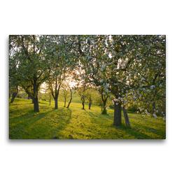 Premium Textil-Leinwand 75 x 50 cm Quer-Format In den Streuobstwiesen | Wandbild, HD-Bild auf Keilrahmen, Fertigbild auf hochwertigem Vlies, Leinwanddruck von GUGIGEI