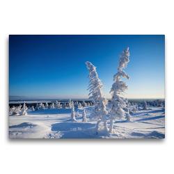 Premium Textil-Leinwand 75 x 50 cm Quer-Format Kalter Schnee in Karelien | Wandbild, HD-Bild auf Keilrahmen, Fertigbild auf hochwertigem Vlies, Leinwanddruck von Rolf Dietz