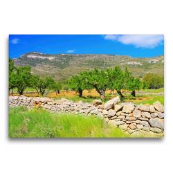 Premium Textil-Leinwand 75 x 50 cm Quer-Format Mandelbäume in den Bergen | Wandbild, HD-Bild auf Keilrahmen, Fertigbild auf hochwertigem Vlies, Leinwanddruck von LianeM