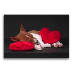 Premium Textil-Leinwand 75 x 50 cm Quer-Format Müde bin ich, geh' zur Ruh' | Wandbild, HD-Bild auf Keilrahmen, Fertigbild auf hochwertigem Vlies, Leinwanddruck von Angelika Joswig