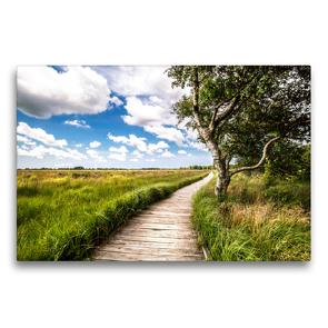 Premium Textil-Leinwand 75 x 50 cm Quer-Format Naturlehrpfad-Blick   Wandbild, HD-Bild auf Keilrahmen, Fertigbild auf hochwertigem Vlies, Leinwanddruck von A. Dreegmeyer