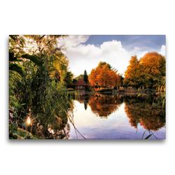 Premium Textil-Leinwand 75 x 50 cm Quer-Format Oktober in der Südheide | Wandbild, HD-Bild auf Keilrahmen, Fertigbild auf hochwertigem Vlies, Leinwanddruck von Garrulus glandarius