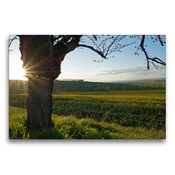 Premium Textil-Leinwand 75 x 50 cm Quer-Format Rund um´s Kloster Donndorf (Thüringen) | Wandbild, HD-Bild auf Keilrahmen, Fertigbild auf hochwertigem Vlies, Leinwanddruck von Flori0