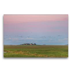 Premium Textil-Leinwand 75 x 50 cm Quer-Format Sonnenaufgang auf der Hallig Langeneß | Wandbild, HD-Bild auf Keilrahmen, Fertigbild auf hochwertigem Vlies, Leinwanddruck von Annett Mirsberger
