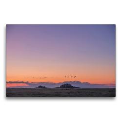 Premium Textil-Leinwand 75 x 50 cm Quer-Format Sonnenuntergang auf der Hallig Langeneß | Wandbild, HD-Bild auf Keilrahmen, Fertigbild auf hochwertigem Vlies, Leinwanddruck von Annett Mirsberger