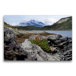 Premium Textil-Leinwand 75 x 50 cm Quer-Format Tierra del Fuego – Große Feuerlandinsel/Argentinien | Wandbild, HD-Bild auf Keilrahmen, Fertigbild auf hochwertigem Vlies, Leinwanddruck von Flori0