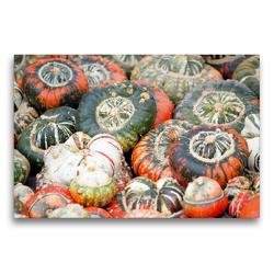 Premium Textil-Leinwand 75 x 50 cm Quer-Format Turban Kürbisse in rot und grün. | Wandbild, HD-Bild auf Keilrahmen, Fertigbild auf hochwertigem Vlies, Leinwanddruck von Anja Frost