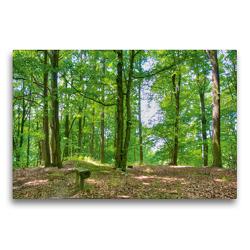 Premium Textil-Leinwand 75 x 50 cm Quer-Format Unterwegs im Wald | Wandbild, HD-Bild auf Keilrahmen, Fertigbild auf hochwertigem Vlies, Leinwanddruck von Ralf Wittstock