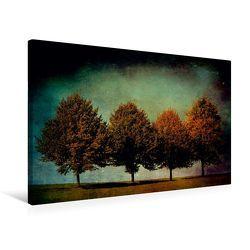 Premium Textil-Leinwand 75 x 50 cm Quer-Format Vier Bäume   Wandbild, HD-Bild auf Keilrahmen, Fertigbild auf hochwertigem Vlies, Leinwanddruck von Heike Hultsch von Hultsch,  Heike