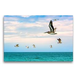 Premium Textil-Leinwand 75 x 50 cm Quer-Format Vogelfrei | Wandbild, HD-Bild auf Keilrahmen, Fertigbild auf hochwertigem Vlies, Leinwanddruck von U-DO