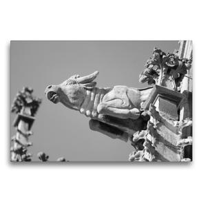 Premium Textil-Leinwand 75 x 50 cm Quer-Format Wasserspeier Stier auf dem Ulmer Münster | Wandbild, HD-Bild auf Keilrahmen, Fertigbild auf hochwertigem Vlies, Leinwanddruck von kattobello
