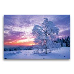 Premium Textil-Leinwand 75 x 50 cm Quer-Format Wintertraum im Schwarzwald | Wandbild, HD-Bild auf Keilrahmen, Fertigbild auf hochwertigem Vlies, Leinwanddruck von CALVENDO