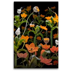 Premium Textil-Leinwand 80 x 120 cm Hoch-Format Caltha palustris | Wandbild, HD-Bild auf Keilrahmen, Fertigbild auf hochwertigem Vlies, Leinwanddruck von Olaf Bruhn