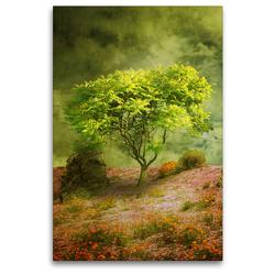 Premium Textil-Leinwand 80 x 120 cm Hoch-Format Der Wunschbaum | Wandbild, HD-Bild auf Keilrahmen, Fertigbild auf hochwertigem Vlies, Leinwanddruck von Martina Kröger