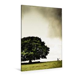 Premium Textil-Leinwand 80 x 120 cm Hoch-Format Juni: Unter herrlichem Sommergrün lässt es die Liebe blühen. | Wandbild, HD-Bild auf Keilrahmen, Fertigbild auf hochwertigem Vlies, Leinwanddruck von Ingo Gerlach GDT von Gerlach GDT,  Ingo