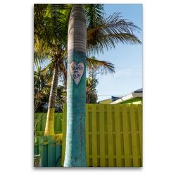 Premium Textil-Leinwand 80 x 120 cm Hoch-Format Matlacha – farbenfrohe Insel in Südwest-Florida | Wandbild, HD-Bild auf Keilrahmen, Fertigbild auf hochwertigem Vlies, Leinwanddruck von Mario Hagen