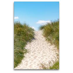 Premium Textil-Leinwand 80 x 120 cm Hoch-Format Pfad zum Strand   Wandbild, HD-Bild auf Keilrahmen, Fertigbild auf hochwertigem Vlies, Leinwanddruck von Andrea Dreegmeyer