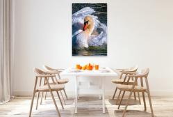 Premium Textil-Leinwand 80 x 120 cm Hoch-Format Schwanentanz | Wandbild, HD-Bild auf Keilrahmen, Fertigbild auf hochwertigem Vlies, Leinwanddruck von Peter Roder