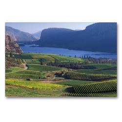 Premium Textil-Leinwand 90 x 60 cm Quer-Format Blue Mountains Vineyards at Vaseux Lake, Okanagan Valley, British Columbia, Canada | Wandbild, HD-Bild auf Keilrahmen, Fertigbild auf hochwertigem Vlies, Leinwanddruck von Christian Heeb