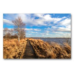 Premium Textil-Leinwand 90 x 60 cm Quer-Format Bohlenweg durch das Hochmoor   Wandbild, HD-Bild auf Keilrahmen, Fertigbild auf hochwertigem Vlies, Leinwanddruck von A. Dreegmeyer