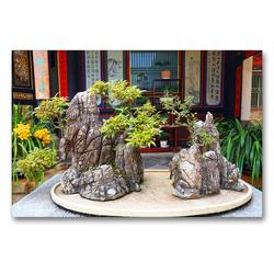 Premium Textil-Leinwand 90 x 60 cm Quer-Format Bonsai – alte chinesische Gartenkunst | Wandbild, HD-Bild auf Keilrahmen, Fertigbild auf hochwertigem Vlies, Leinwanddruck von Thomas Böhm