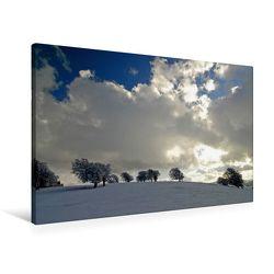 Premium Textil-Leinwand 90 x 60 cm Quer-Format Die Wetterbuchen am Schauinsland | Wandbild, HD-Bild auf Keilrahmen, Fertigbild auf hochwertigem Vlies, Leinwanddruck von Ingo Laue