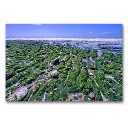 Premium Textil-Leinwand 90 x 60 cm Quer-Format Eastbourne | Wandbild, HD-Bild auf Keilrahmen, Fertigbild auf hochwertigem Vlies, Leinwanddruck von Alfred Hadler