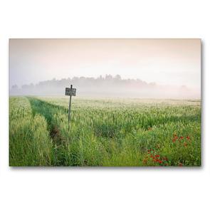 Premium Textil-Leinwand 90 x 60 cm Quer-Format Frühling in der Toskana – Die Gegend von San Galgano, Siena   Wandbild, HD-Bild auf Keilrahmen, Fertigbild auf hochwertigem Vlies, Leinwanddruck von CALVENDO