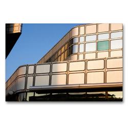 Premium Textil-Leinwand 90 x 60 cm Quer-Format Hypotaurus | Wandbild, HD-Bild auf Keilrahmen, Fertigbild auf hochwertigem Vlies, Leinwanddruck von Martina Marten