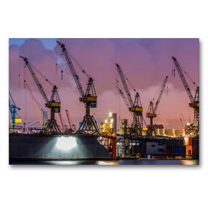 Premium Textil-Leinwand 90 x 60 cm Quer-Format Krane – bärenstarke Arbeitstiere   Wandbild, HD-Bild auf Keilrahmen, Fertigbild auf hochwertigem Vlies, Leinwanddruck von Peter Roder