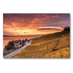 Premium Textil-Leinwand 90 x 60 cm Quer-Format Lavaux | Wandbild, HD-Bild auf Keilrahmen, Fertigbild auf hochwertigem Vlies, Leinwanddruck von Jackie Venzin