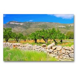 Premium Textil-Leinwand 90 x 60 cm Quer-Format Mandelbäume in den Bergen | Wandbild, HD-Bild auf Keilrahmen, Fertigbild auf hochwertigem Vlies, Leinwanddruck von LianeM