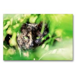 Premium Textil-Leinwand 90 x 60 cm Quer-Format Mausi | Wandbild, HD-Bild auf Keilrahmen, Fertigbild auf hochwertigem Vlies, Leinwanddruck von N N