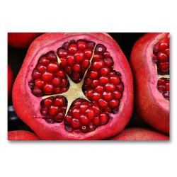 Premium Textil-Leinwand 90 x 60 cm Quer-Format Meine Ernährung mit Rohkost und Co.: So esse ich mich gesund! | Wandbild, HD-Bild auf Keilrahmen, Fertigbild auf hochwertigem Vlies, Leinwanddruck von Rose Hurley