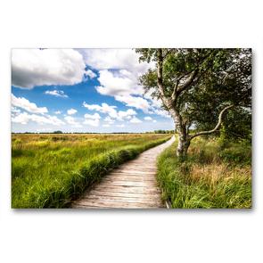 Premium Textil-Leinwand 90 x 60 cm Quer-Format Naturlehrpfad-Blick   Wandbild, HD-Bild auf Keilrahmen, Fertigbild auf hochwertigem Vlies, Leinwanddruck von A. Dreegmeyer
